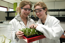Female school students in a plant lab
